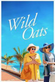 Wild Oats (2016)